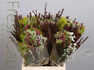 Bouquet African Mix exporter, grower & producer