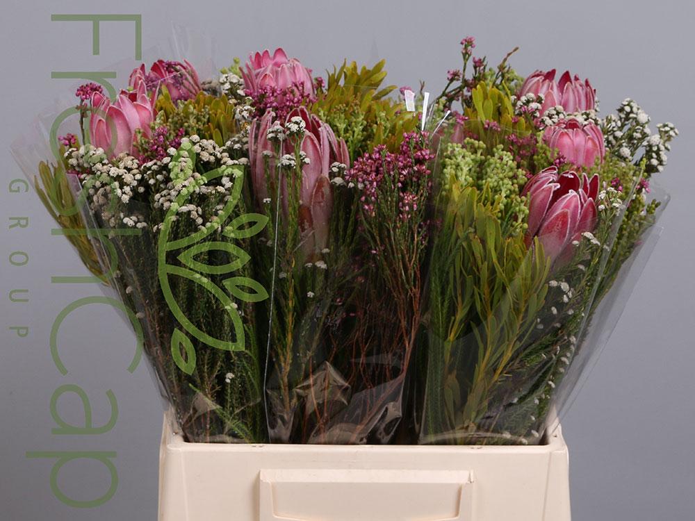 Compacta Single Flower Bouquet