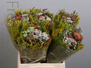 Bouquet Edelkeur grower, exporter & producer