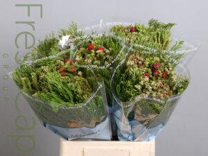 Bouquet Green Mix grower, exporter & producer