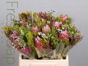 Hybrid Single Protea Bouquet grower, exporter & producer