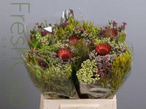 Bouquet Shamrock Mix grower, exporter & producer