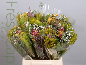 Bouquet Summer Morn grower, exporter & producer