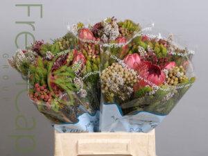 Hybrid 3 Protea Bouquet grower, exporter & producer