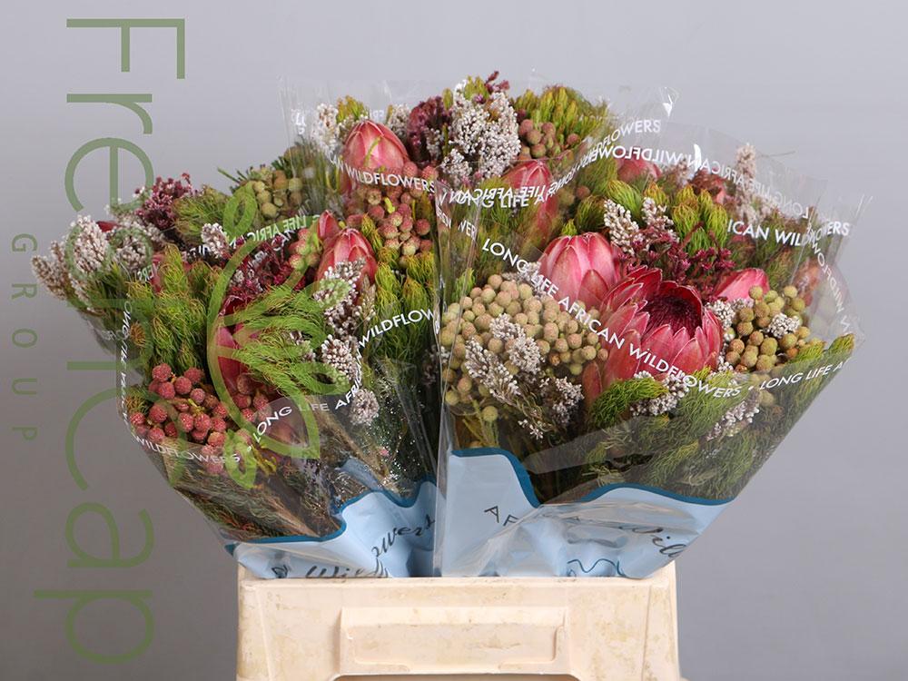 Hybrid 3 Protea Bouquet