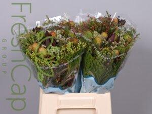 Bouquet Cone Mix Jumbo grower, exporter & producer