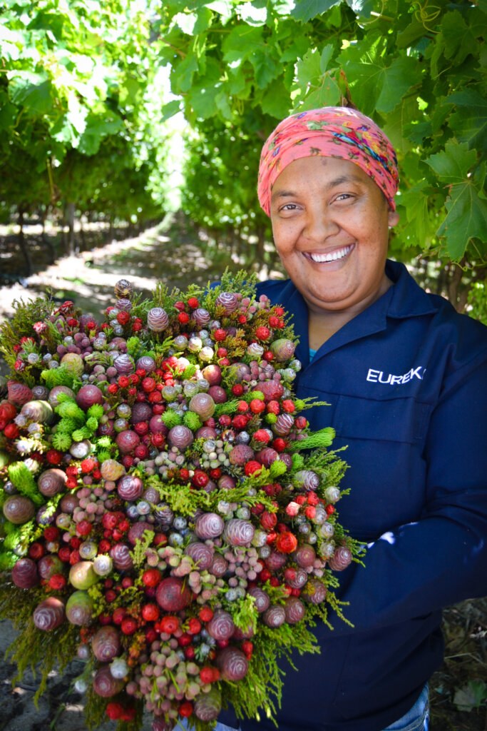 Bouquet Grower Exporter Producer